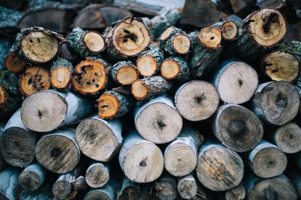 percussion_education_wood